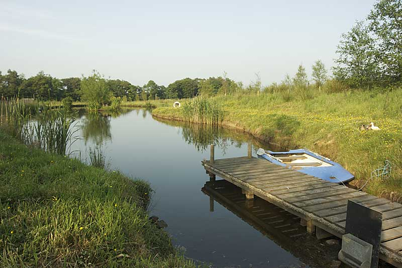 Mossdale farm news fish pond for Farm pond fish